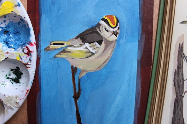 Bird layer 3