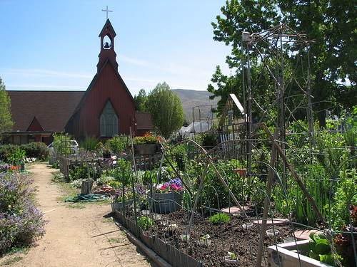 Community Garden with church in background