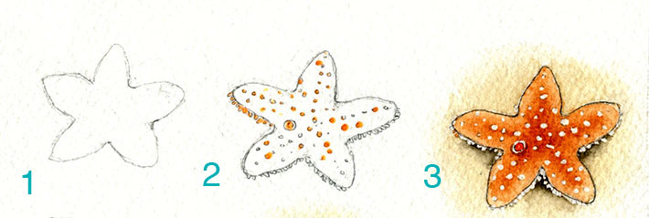 Starfish painted with watercolors