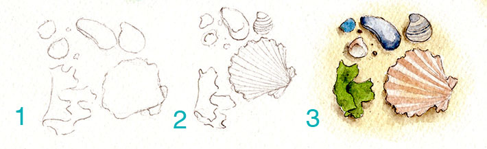 Seashell vignette