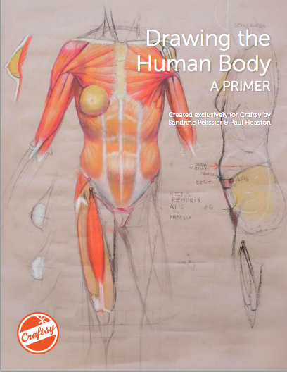 Drawing the Human Body: Free PDF Primer, available on Bluprint