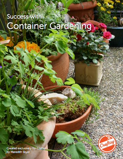 Success With Container Gardening - FREE PDF guide on Bluprint