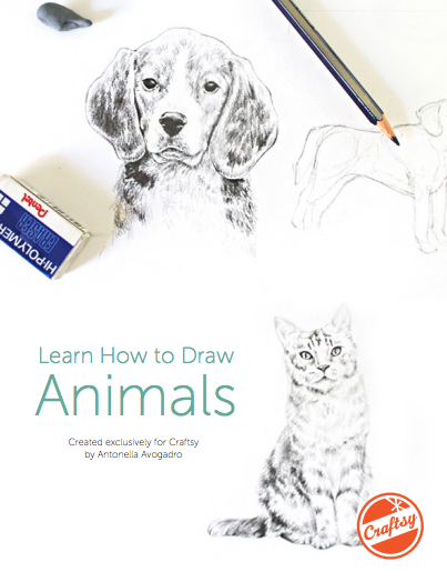 Learn How to Draw Animals - Free PDF guide on Bluprint.com