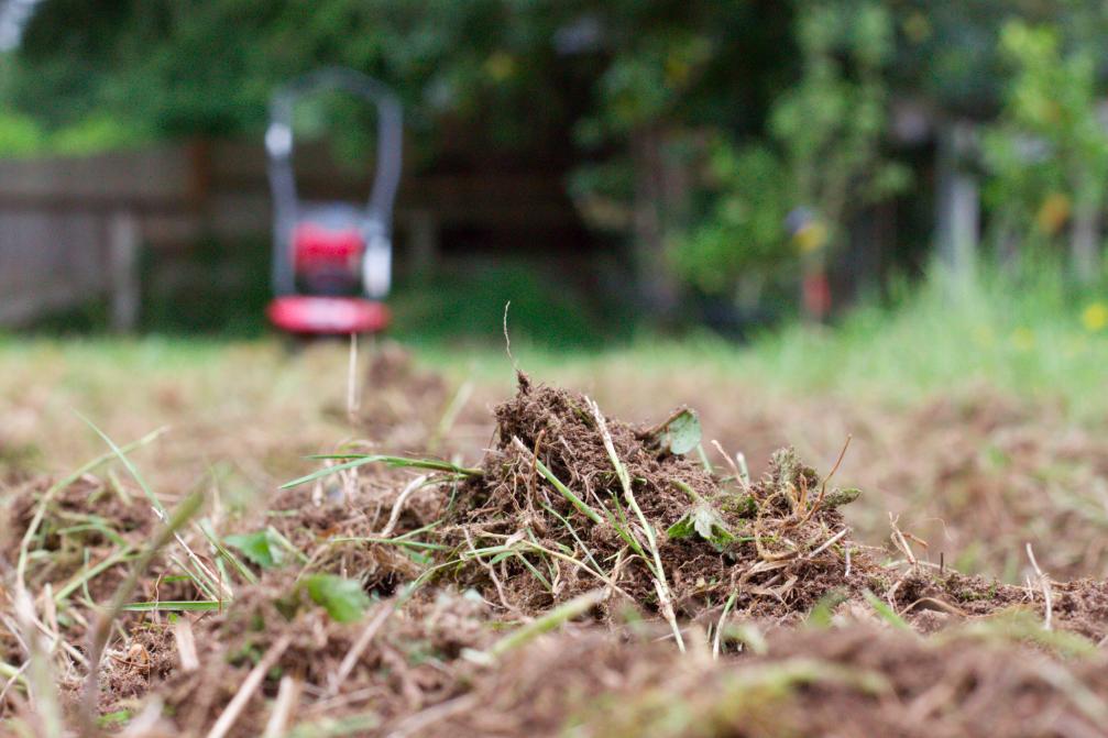 Prep your soil