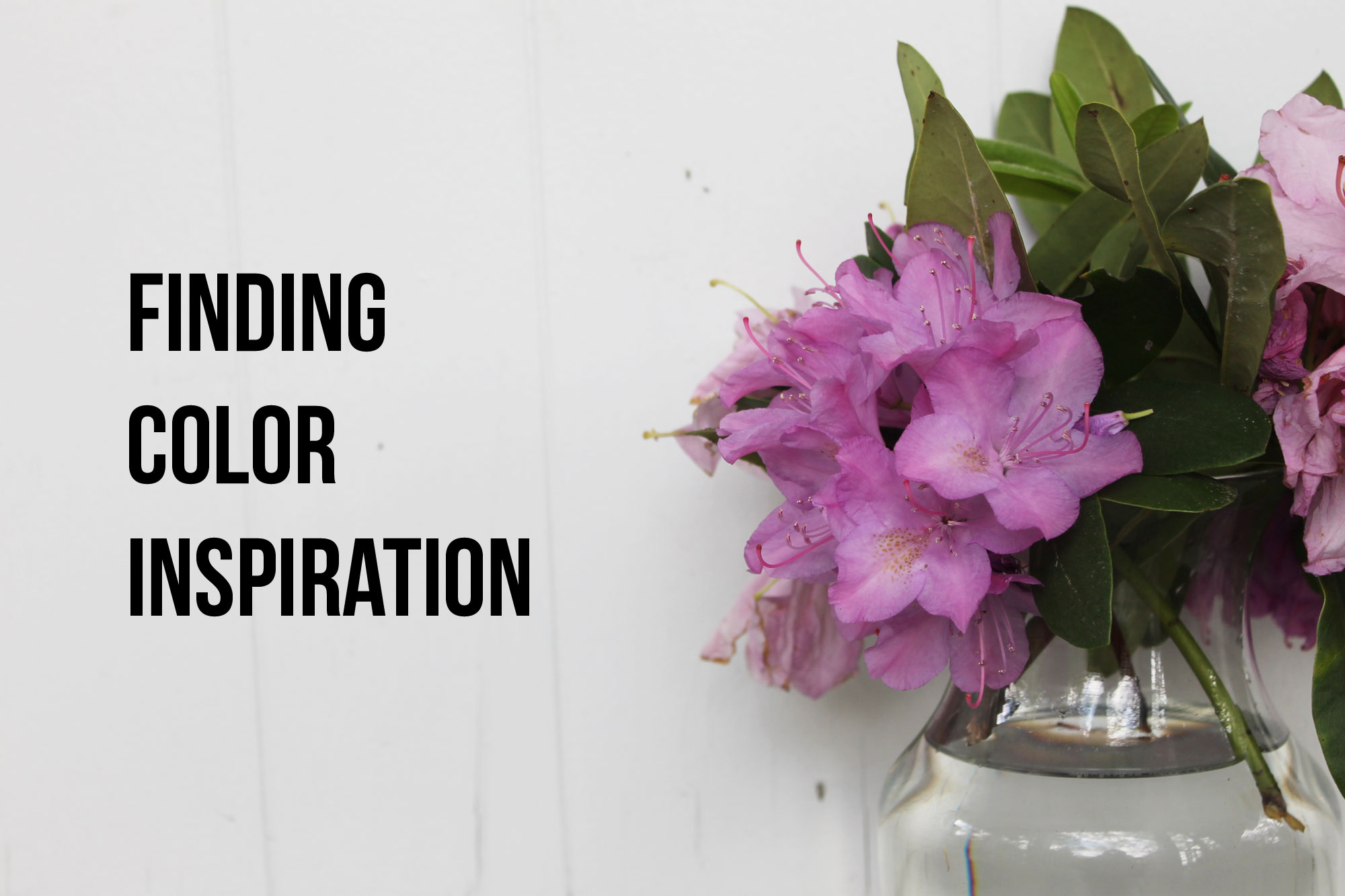 Finding color inspiration