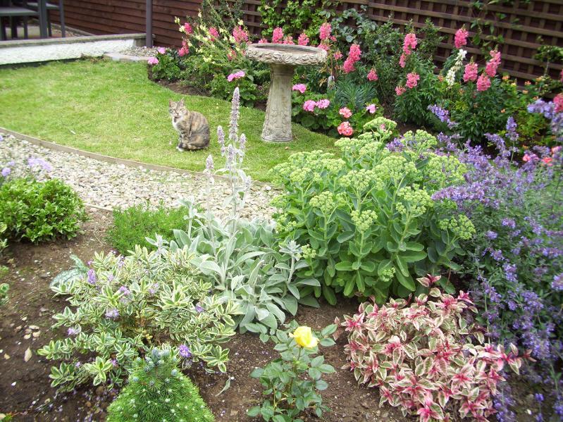 Inspiring Garden
