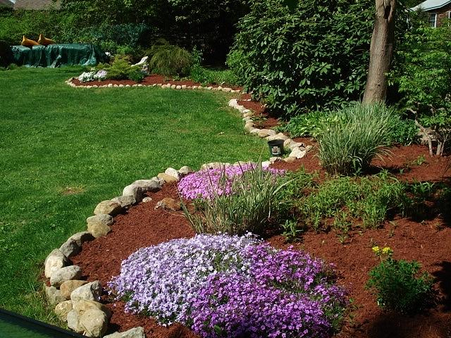 Freshly mulched garden