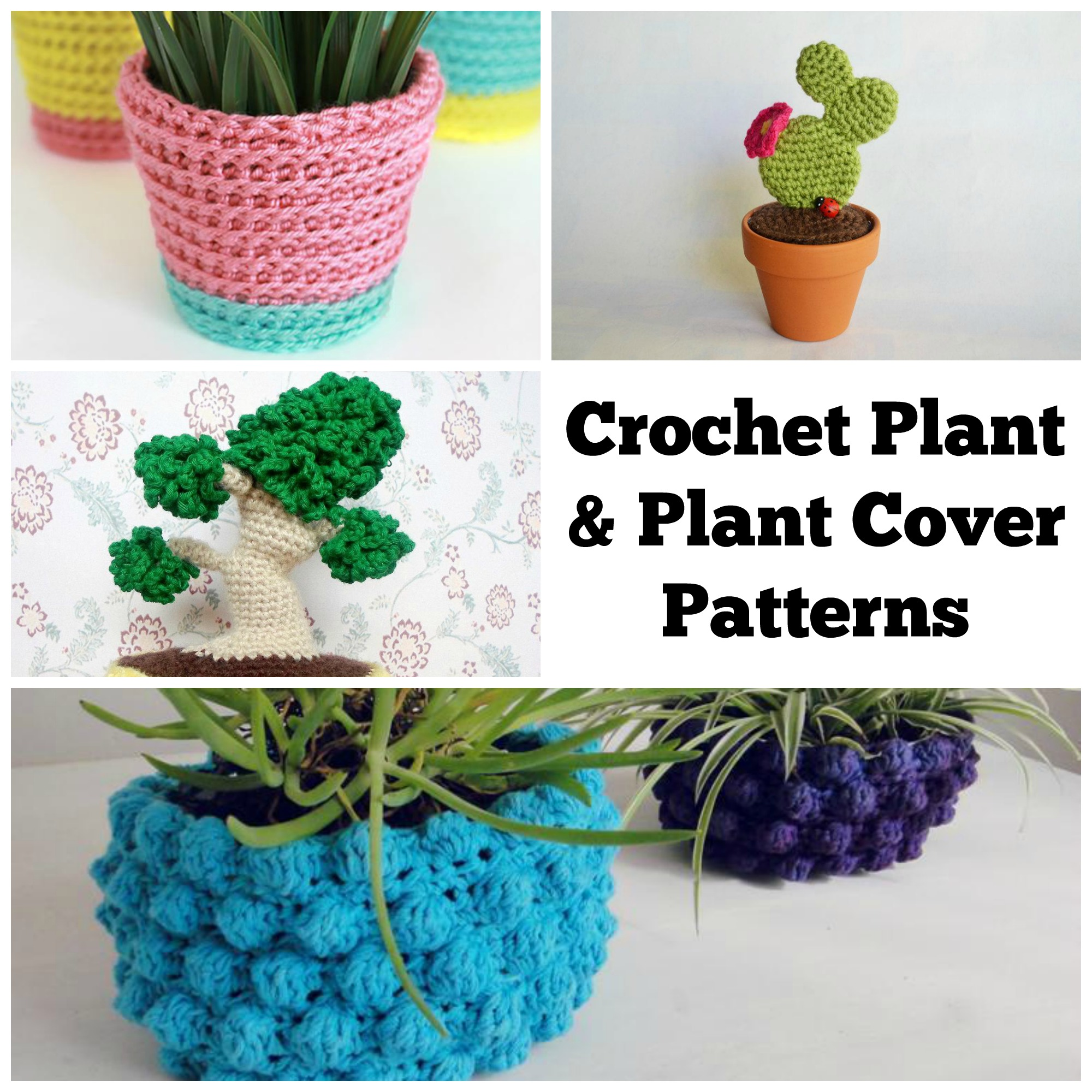 Crochet Plant and Plant Holder Patterns