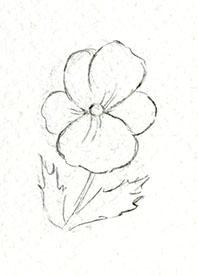Pansy sketch