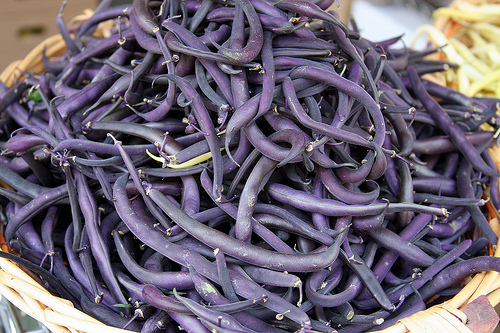 Purple Pod pole beans are delicious and beautiful