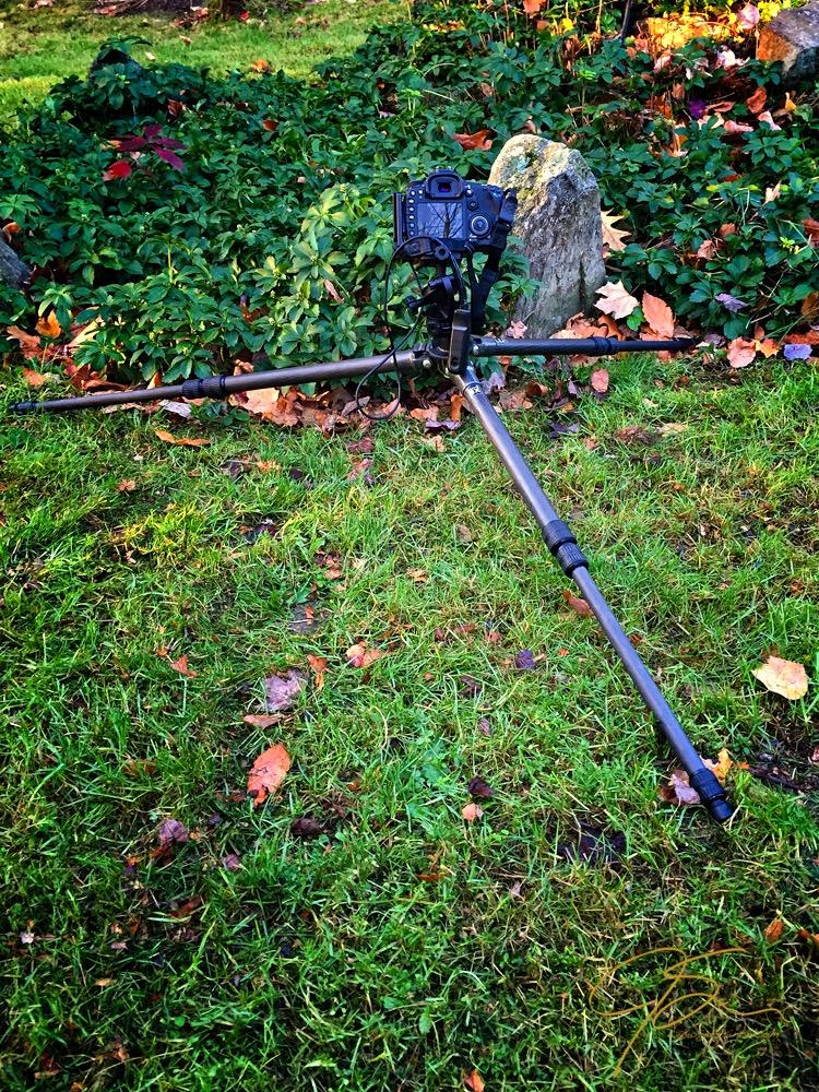 Camera on Low-Set Tripod
