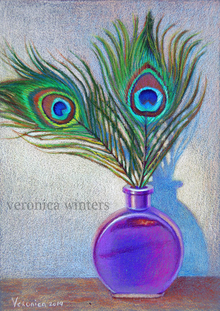 peacock feathers colored pencil drawing
