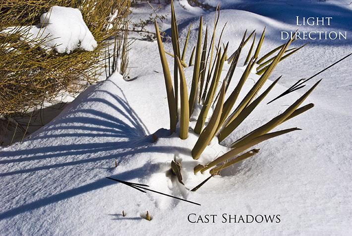 Cast Shadows Outdoors