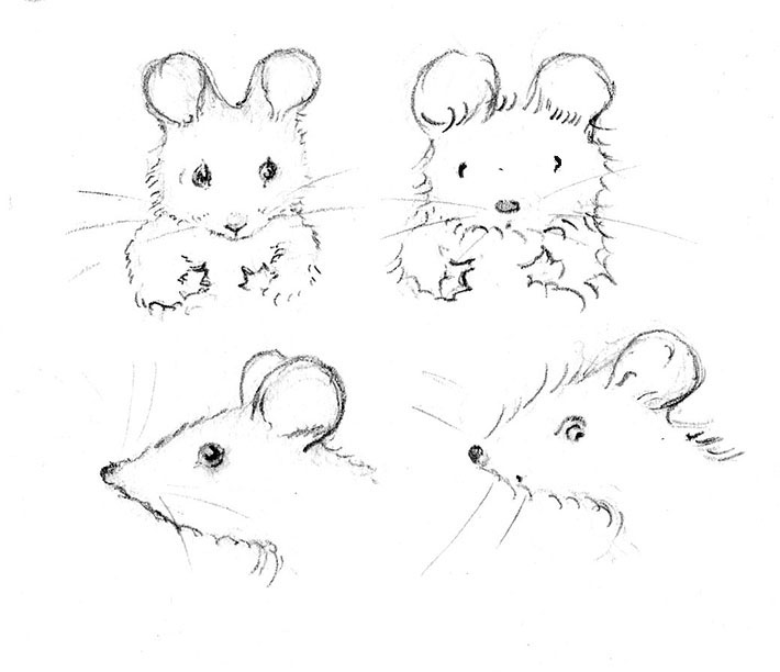 Two Styles of Mouse Drawings