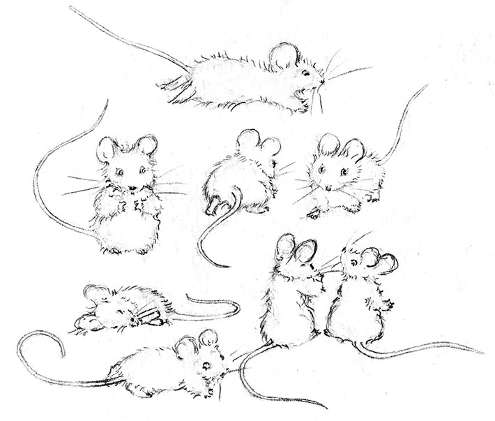 Mouse Poses for Drawing
