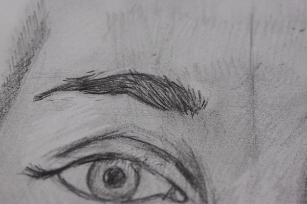 Left Eyebrow