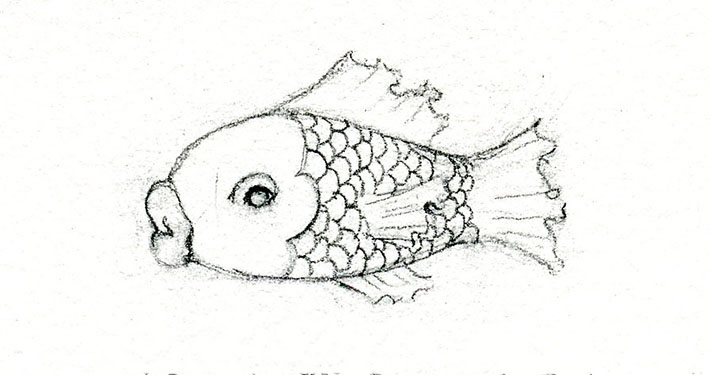 Sketch of fish with detailed scales pattern.