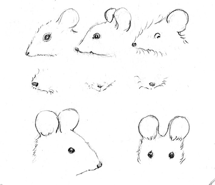 Drawing Mouse Eyes, Ears and Noses