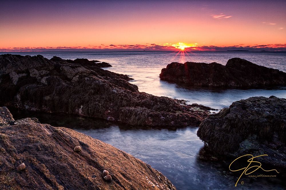 Periwinkle snails and large granite rocks on the New Hampshire seacoast at sunrise