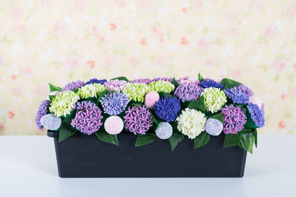 Hydrangea cake in planter