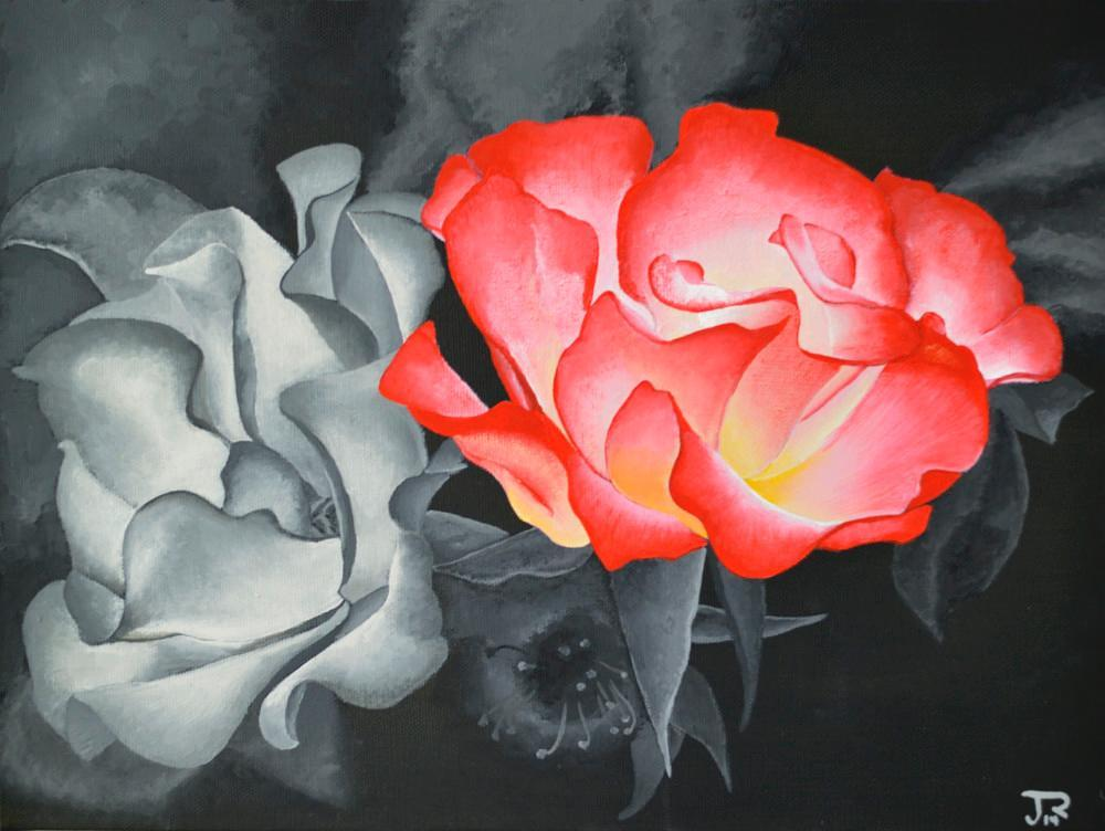 Red and black and white roses