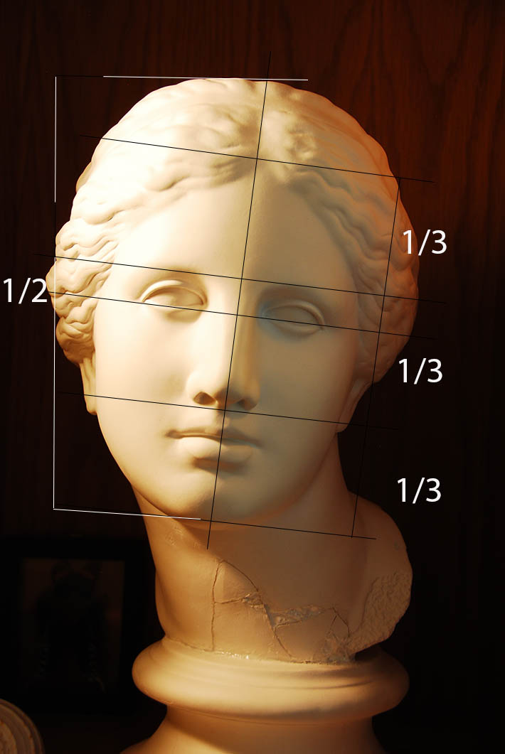 classical female head proportions