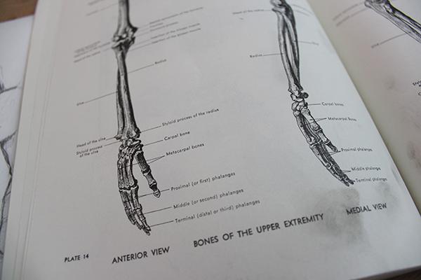 Anatomy book of hands