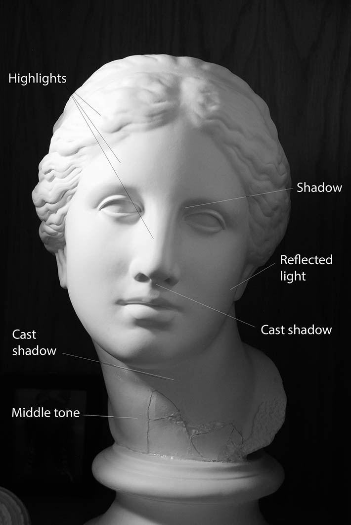 female face distribution of light