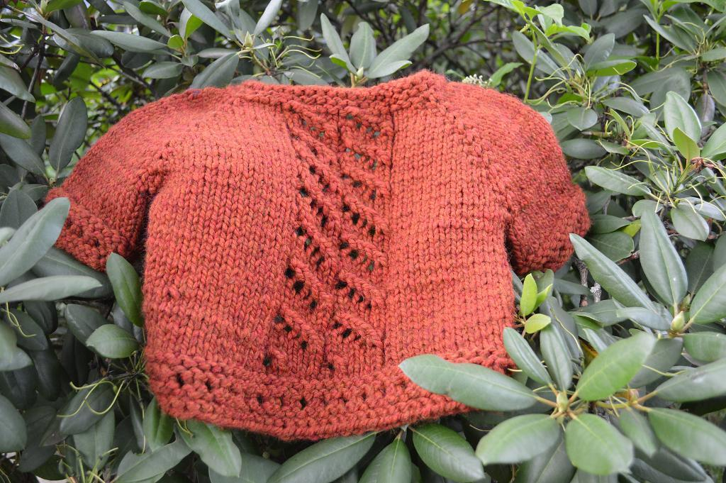 Snug as a Ladybug in a Rug FREE Sweater Knitting Pattern