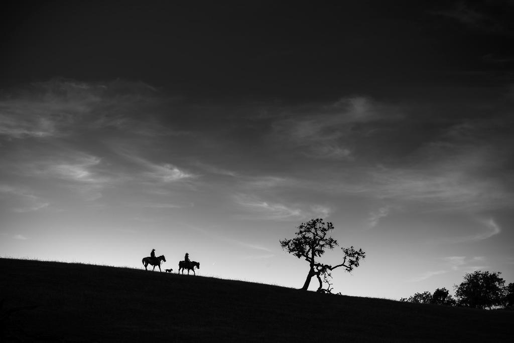 Silhouettes in Landscape Photography