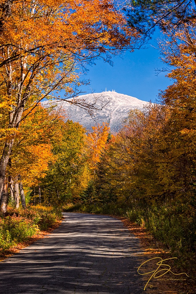 Snow capped mount washington seen through a window in the fall foliage.