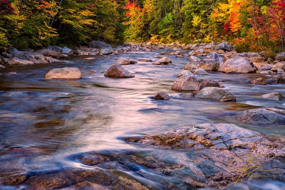 Swift River Autumn Color.