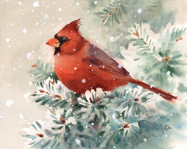 Red Cardinal Watercolor