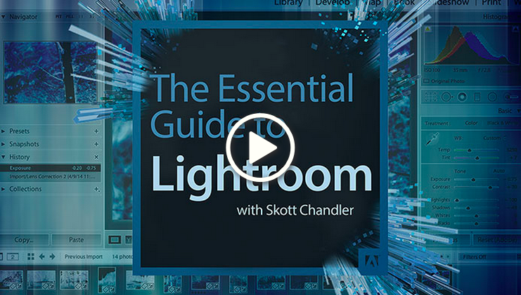 The Essential Guide to Lightroom