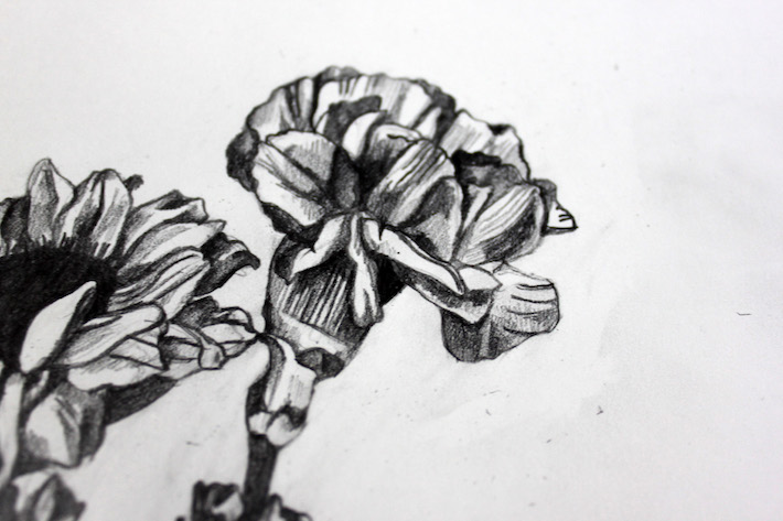 drawing flower details