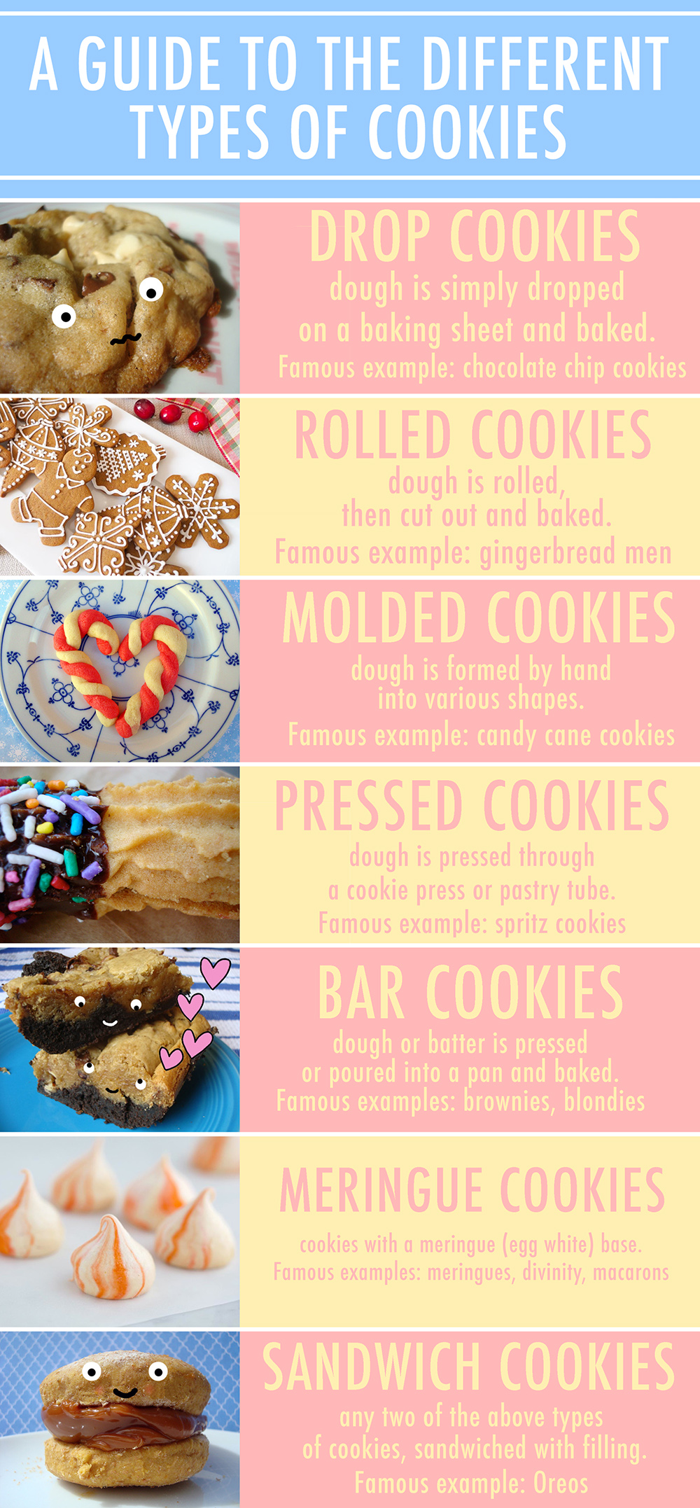 Different Types of Cookies Infograph