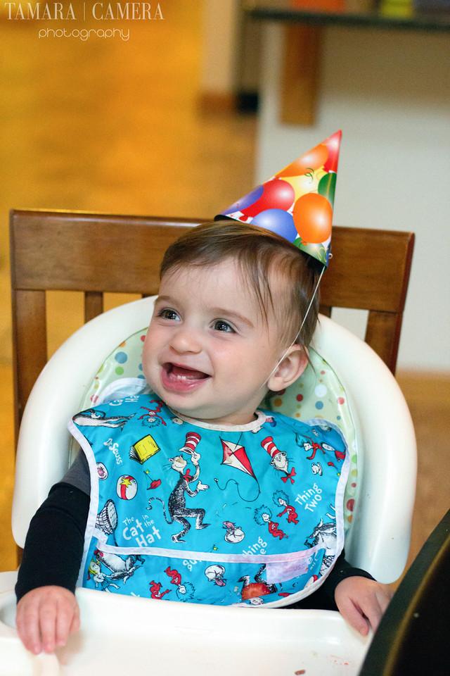 First Birthday Baby Photo
