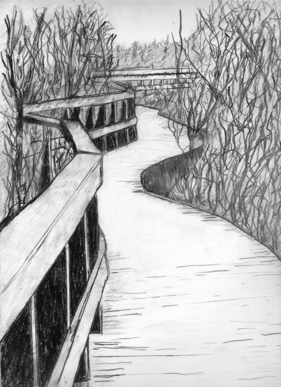 Charcoal Landscape Drawing