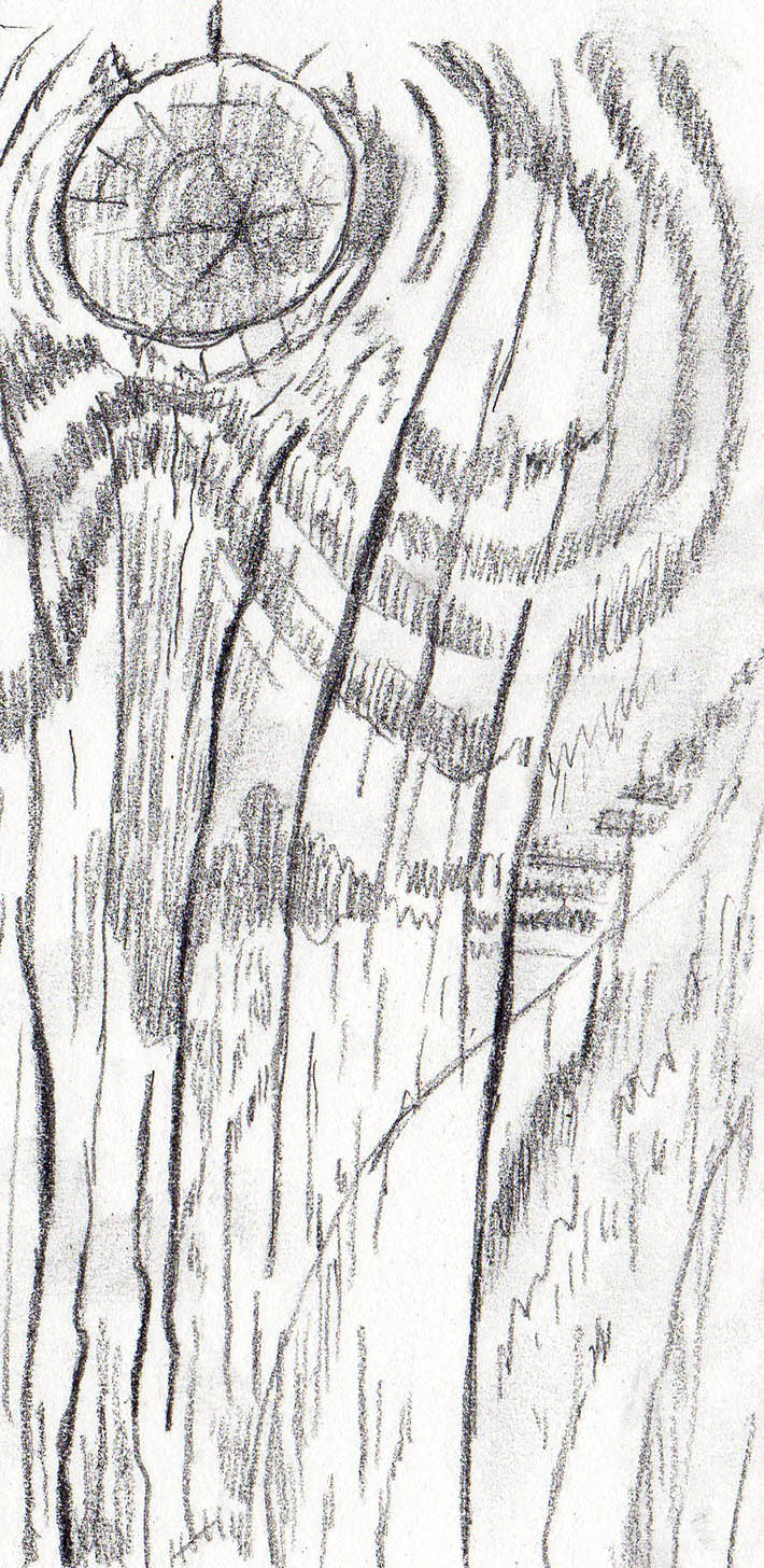 s drawing wood texture graphite step 1