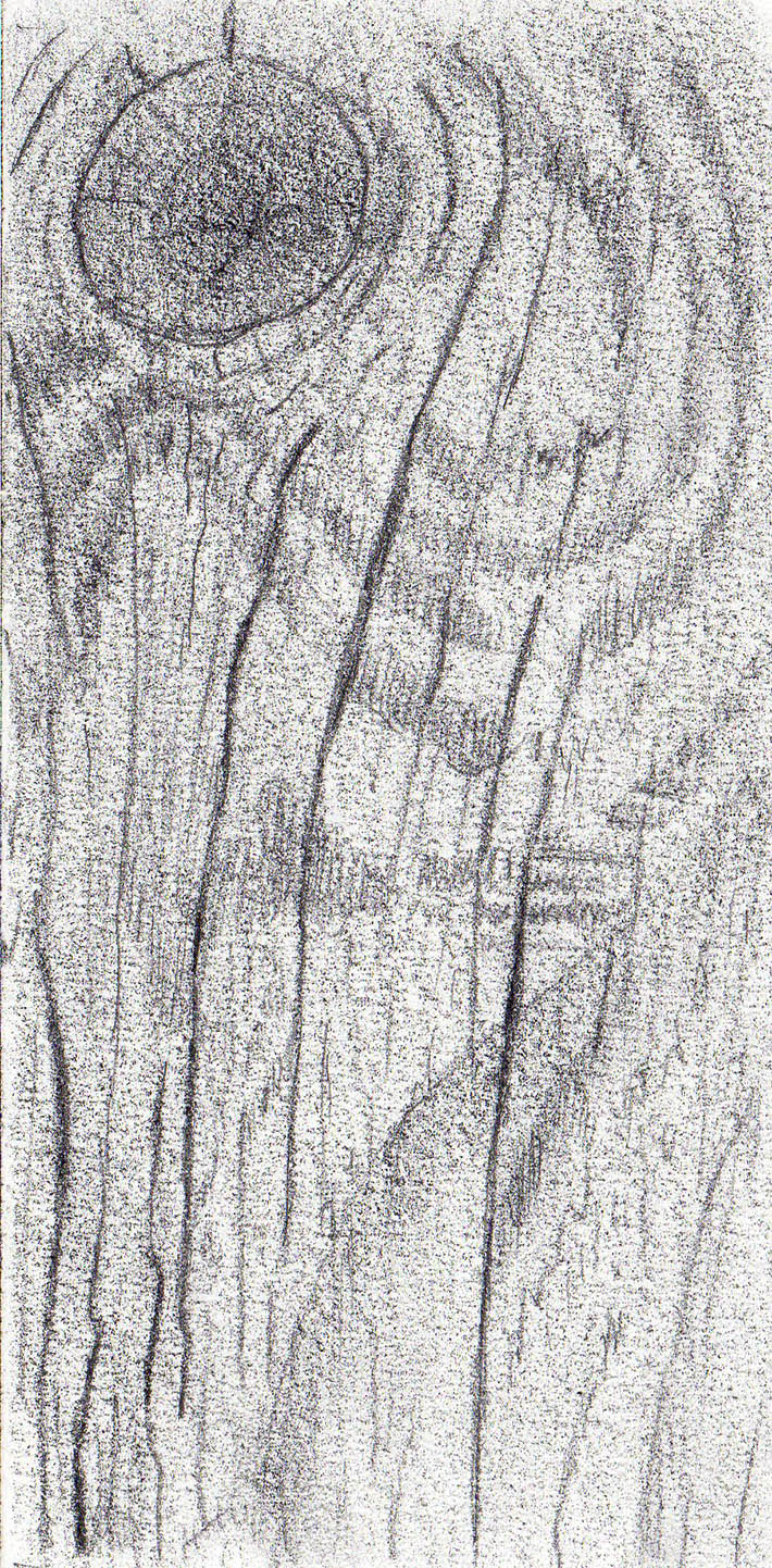s drawing wood texture graphite step 2