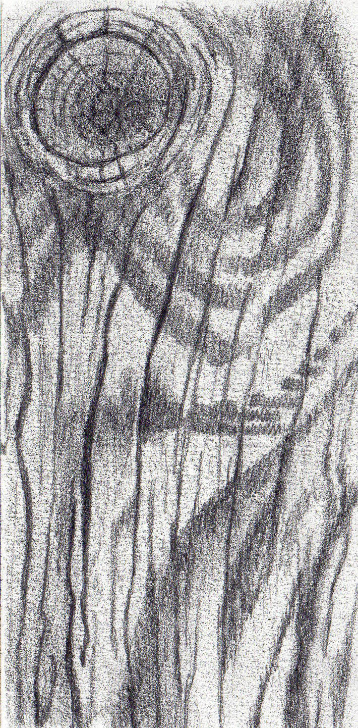 s drawing wood texture graphite step 3