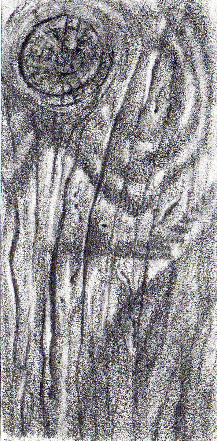 s drawing wood texture graphite step 4