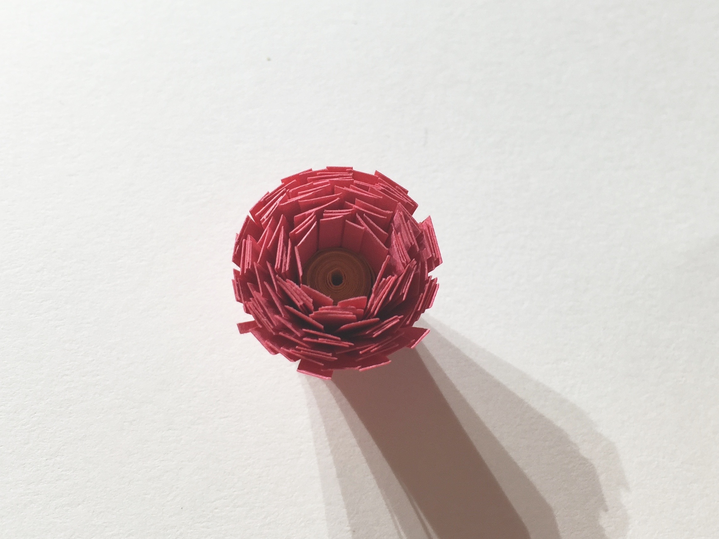 Image of fringed flower off the quilling tool.