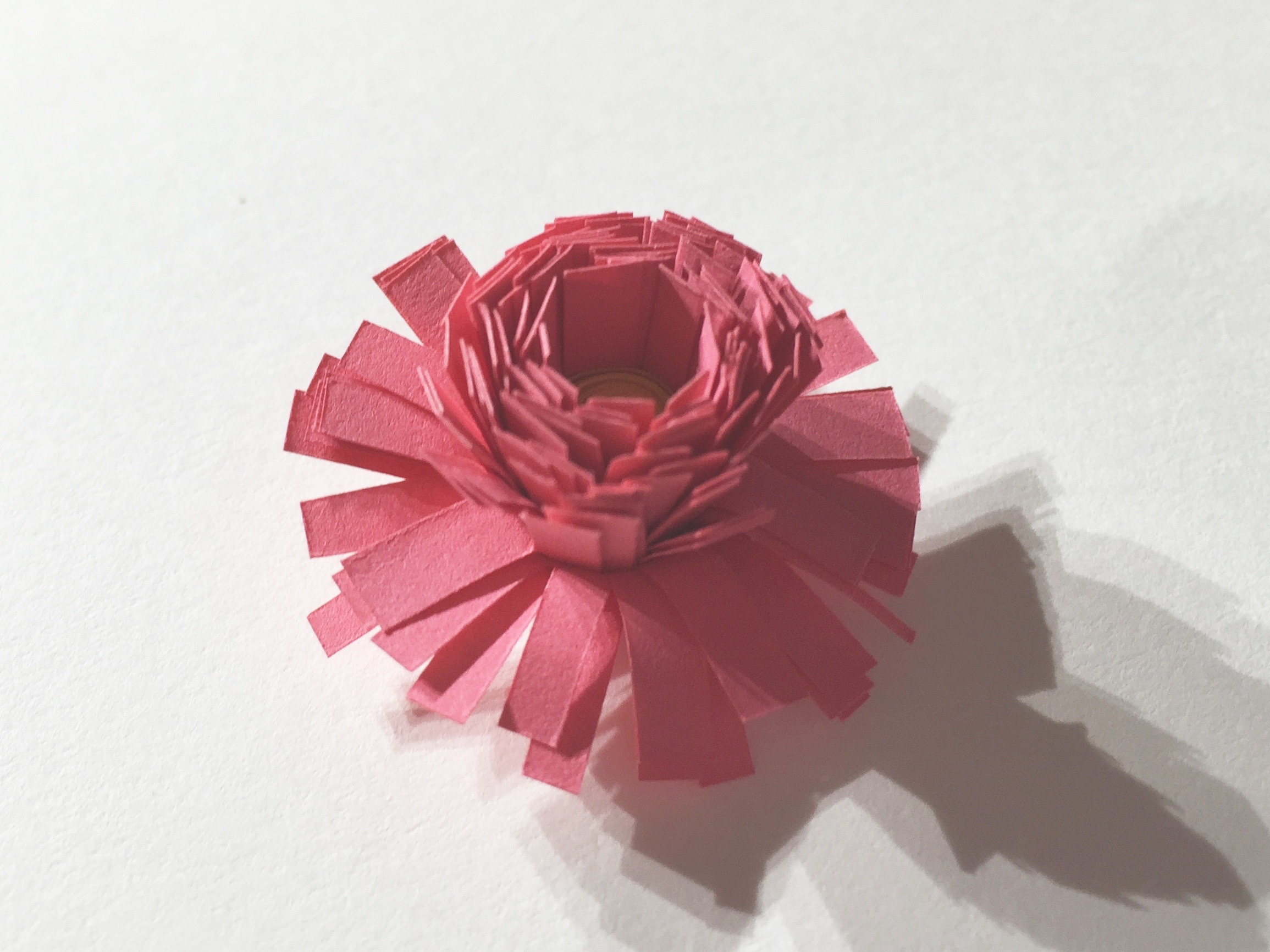 Image of fringed quilling flower