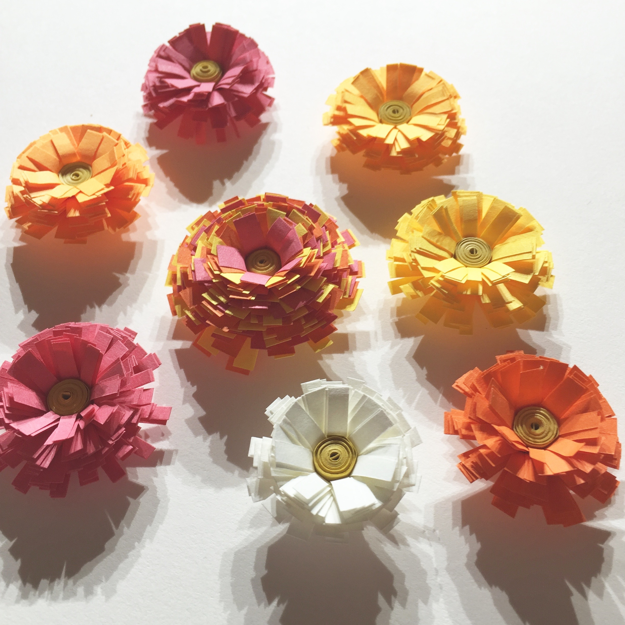 Image of quilled fringe flowers