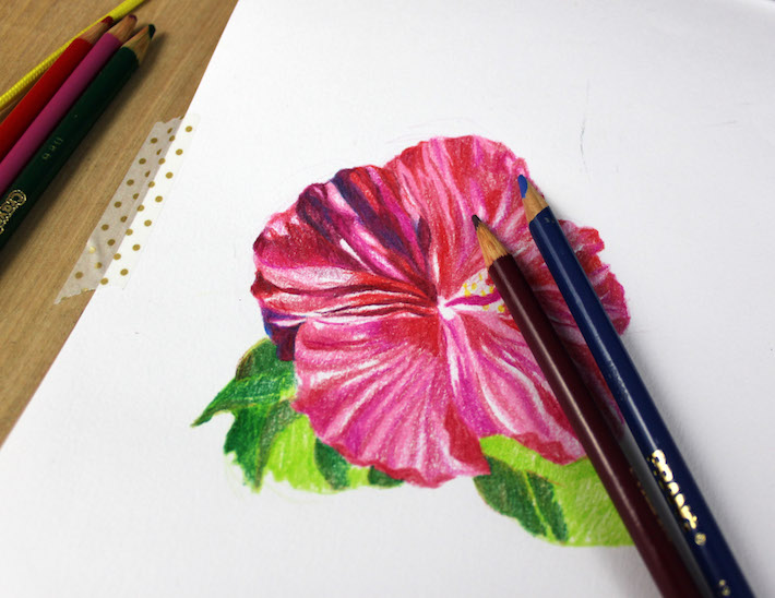 Flower with more shading