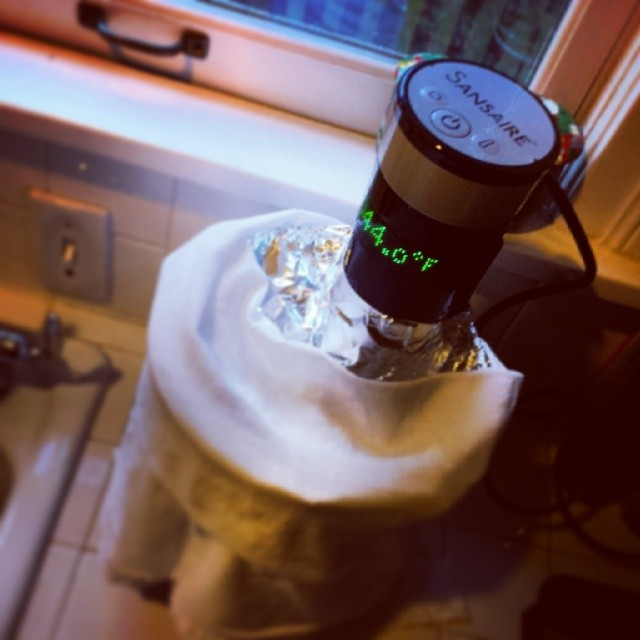 Sous vide with immersion circulator
