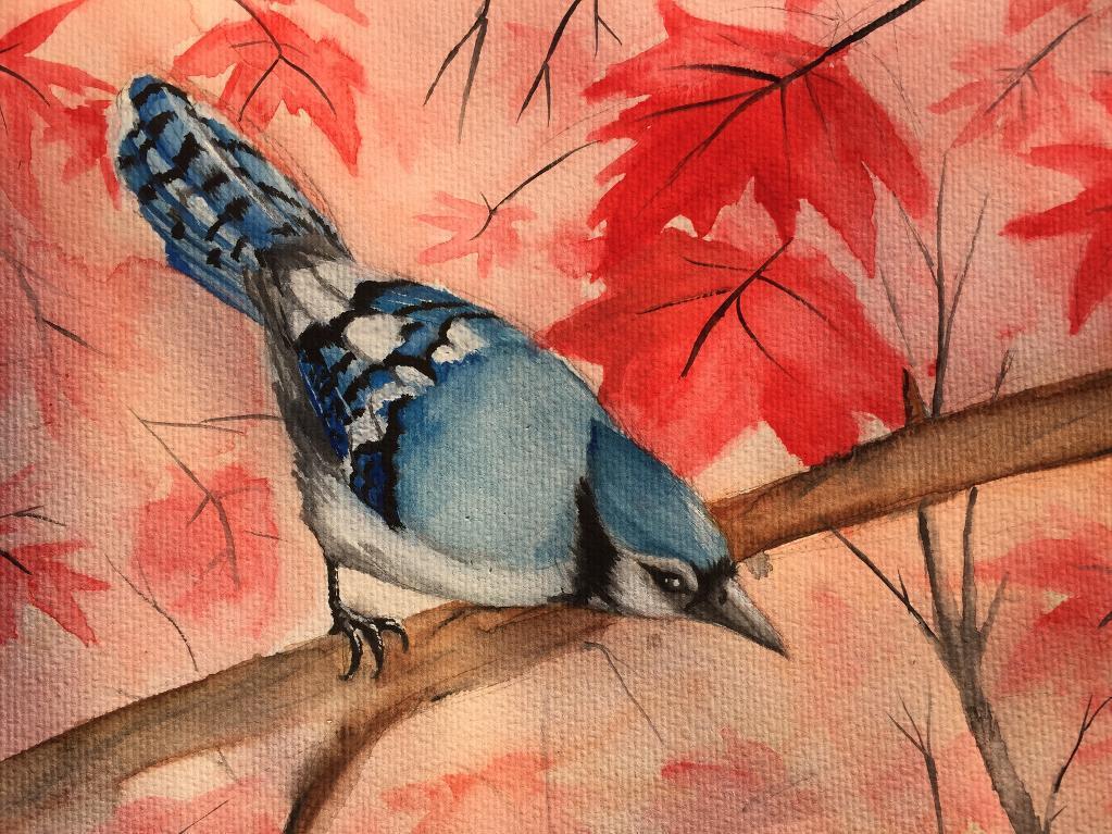 Bird in the woods
