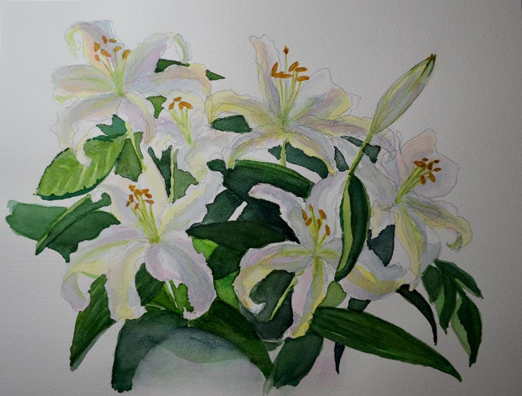 Painted Lillies