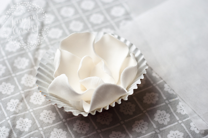 Golden magnolia cupcake tutorial by Juniper Cakery